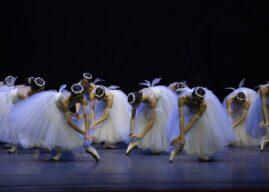 Transmisje spektakli baletowych na Międzynarodowy Dzień Tańca
